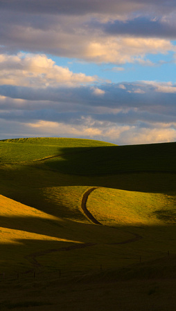 BradyCabe-rolling-hills-wallpaper