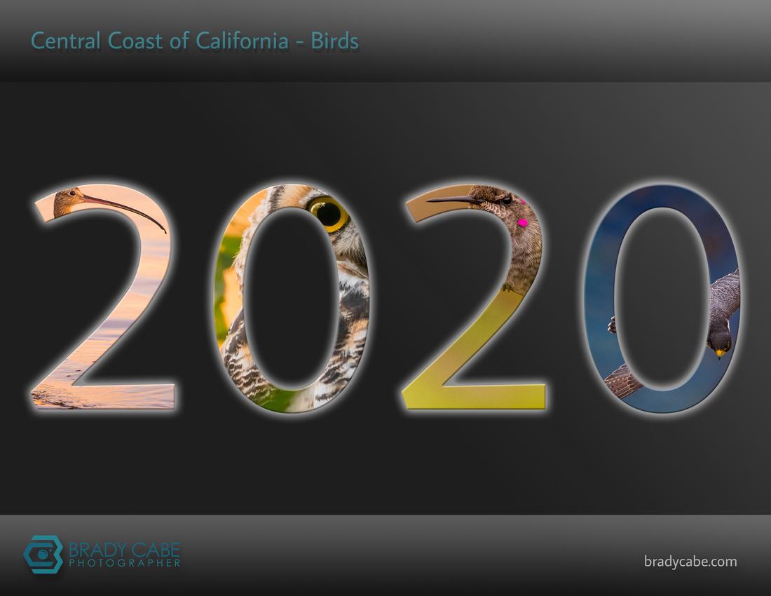 cover-birds-2020-calendar-birds