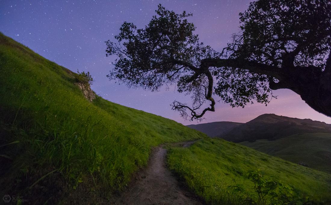 Path Beyond