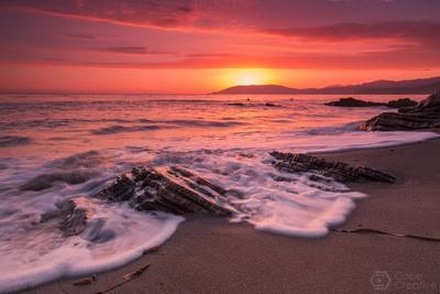 Shell Beach Sunset Crest