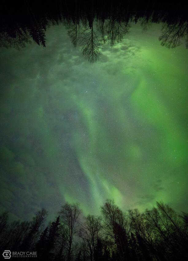 vert-green-pano