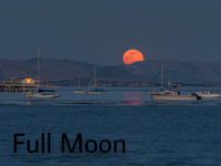 Image-Menu-Item-full-moon